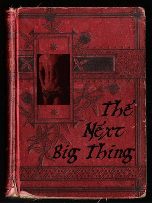 The Next Big Thing Author Exchange