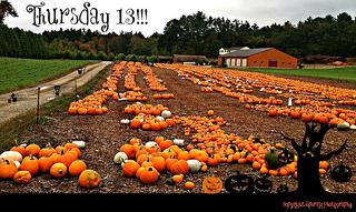 Thursday 13 Pumpkins!