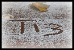 Thursday 13 for November 8, 2012